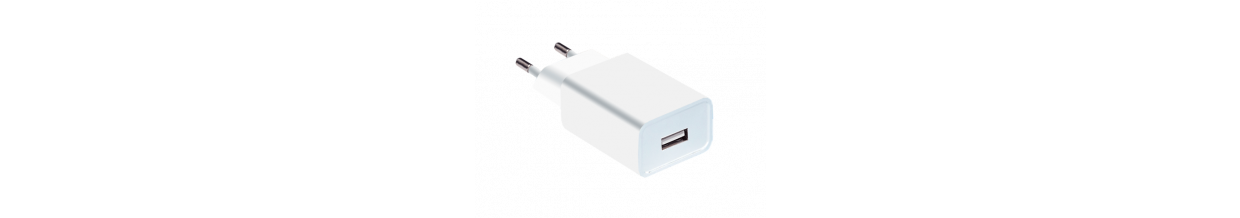 PayEye USB Wall Charger